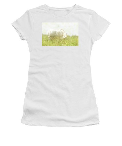 Dream Horse Women's T-Shirt