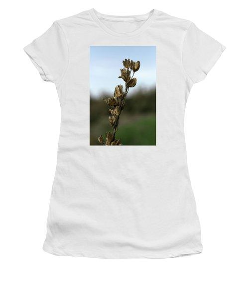 Drying Flower Women's T-Shirt (Junior Cut) by Shlomo Zangilevitch