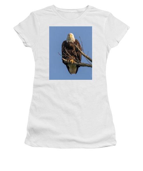 Eagle Stare Women's T-Shirt
