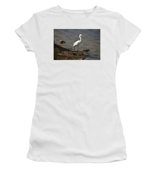 Egret 1 Women's T-Shirt (Junior Cut) by Gordon Mooneyhan