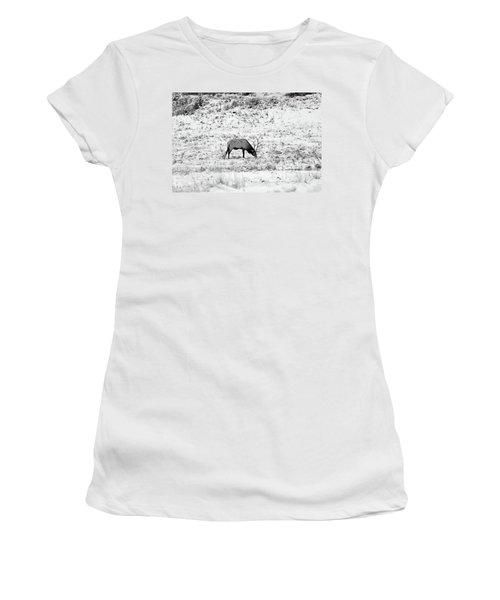 Elk In Black And White - Estes Park Women's T-Shirt