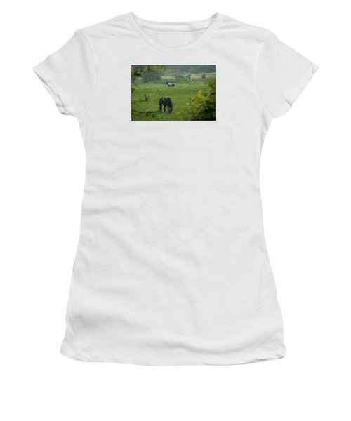 Equine Buddies Women's T-Shirt