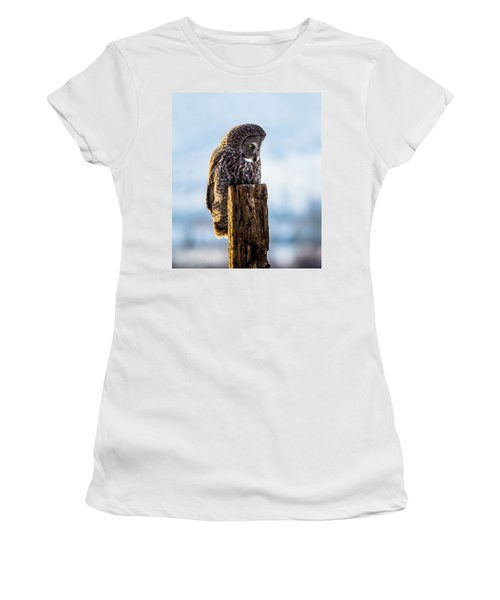 Eye On The Prize - Great Gray Owl Women's T-Shirt (Junior Cut)