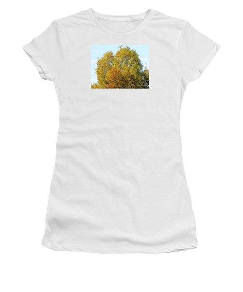 Fall Tree Women's T-Shirt (Junior Cut) by Craig Walters