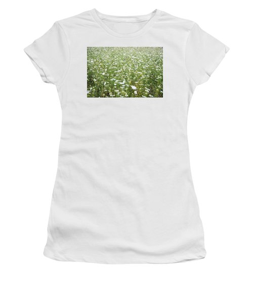 Field Of Queen Annes Lace Women's T-Shirt