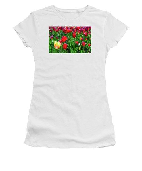Tulip Garden Women's T-Shirt