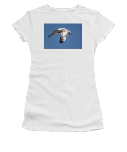 Flying Seagull Women's T-Shirt