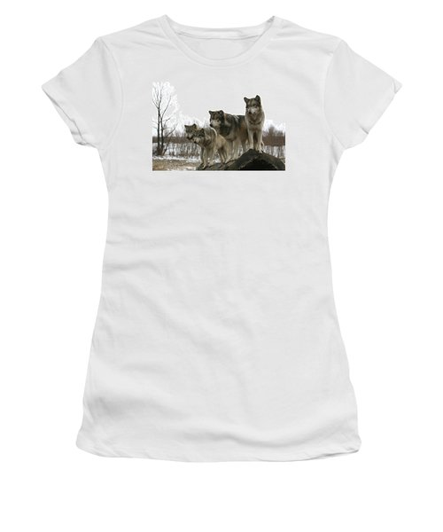 Women's T-Shirt (Junior Cut) featuring the photograph Four Pack by Shari Jardina