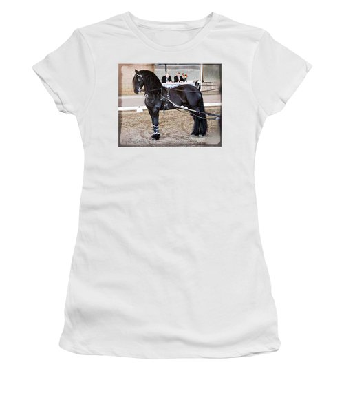 Friesian Stallion Under Harness Women's T-Shirt