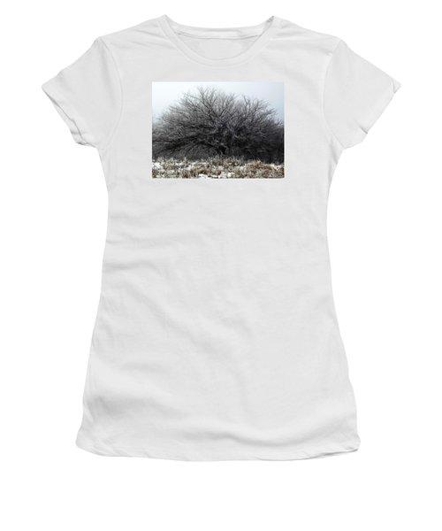Frosted Elm Women's T-Shirt