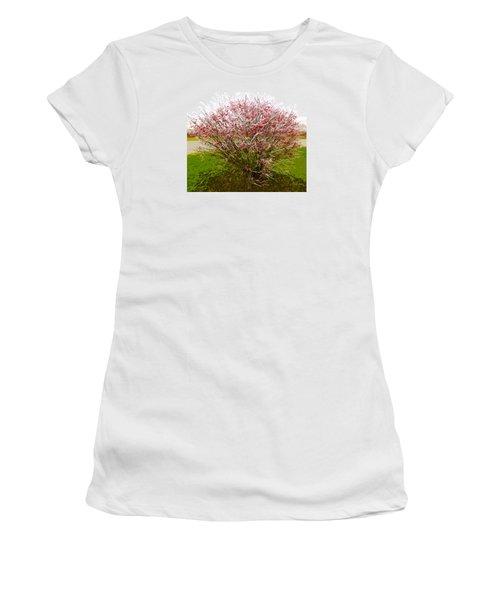 Frosty Fire Bush Women's T-Shirt (Junior Cut) by Spyder Webb
