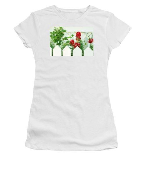 Garden Fence - Key West Women's T-Shirt
