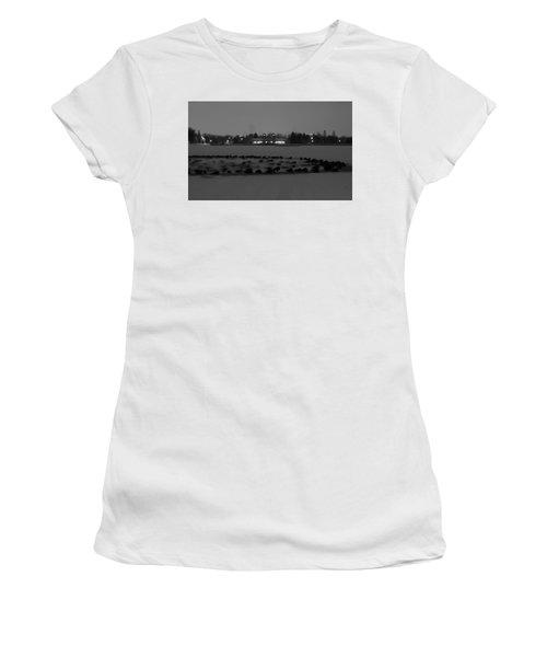 Geese In Frozen Lake Women's T-Shirt