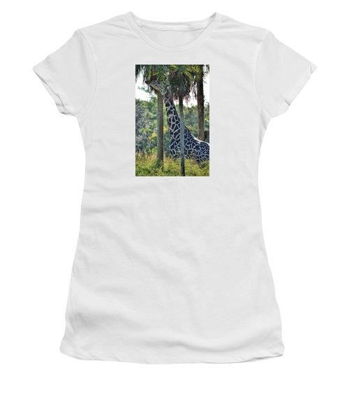 Giraffe Women's T-Shirt (Junior Cut) by Nikki McInnes