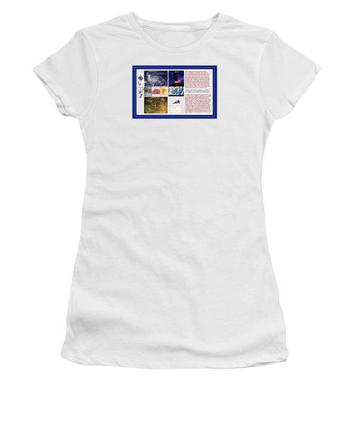 Glimpsing Divinity Women's T-Shirt (Junior Cut) by Peter Hedding