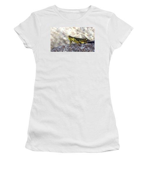 Grasshopper Women's T-Shirt (Junior Cut) by Joseph Skompski