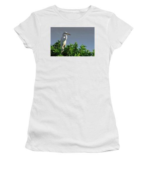 Great White Egret  Women's T-Shirt