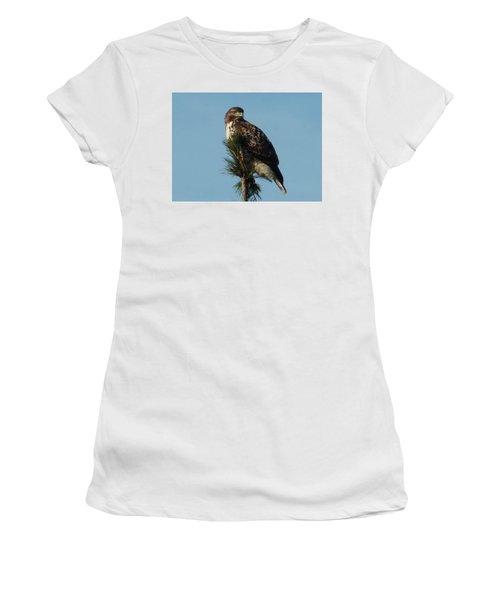 Hawk Atop Tree Women's T-Shirt (Junior Cut) by Karen Molenaar Terrell