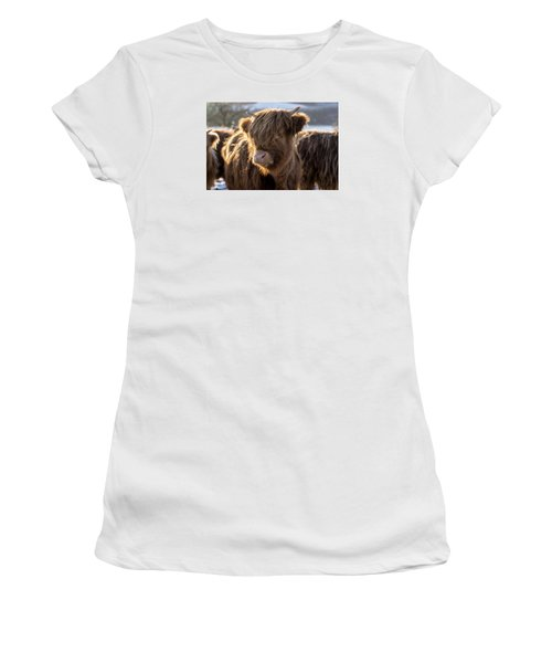 Highland Baby Coo Women's T-Shirt (Junior Cut) by Jeremy Lavender Photography