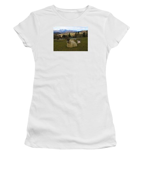 Hill Sheep Women's T-Shirt (Junior Cut) by RKAB Works