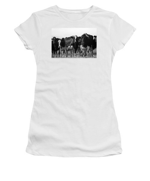 Curious Holsteins Women's T-Shirt