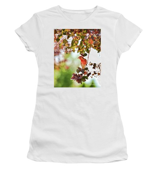Women's T-Shirt (Athletic Fit) featuring the photograph House Finch Hanging Around by Kerri Farley