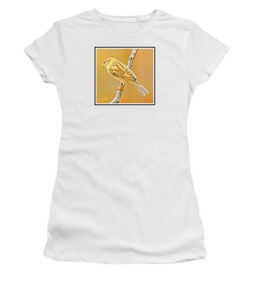 Women's T-Shirt (Junior Cut) featuring the photograph House Sparrow by A Gurmankin