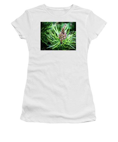 Humble Beginnings Women's T-Shirt