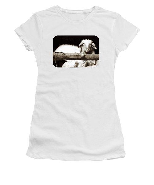 In The Pen Women's T-Shirt (Junior Cut) by Ethna Gillespie