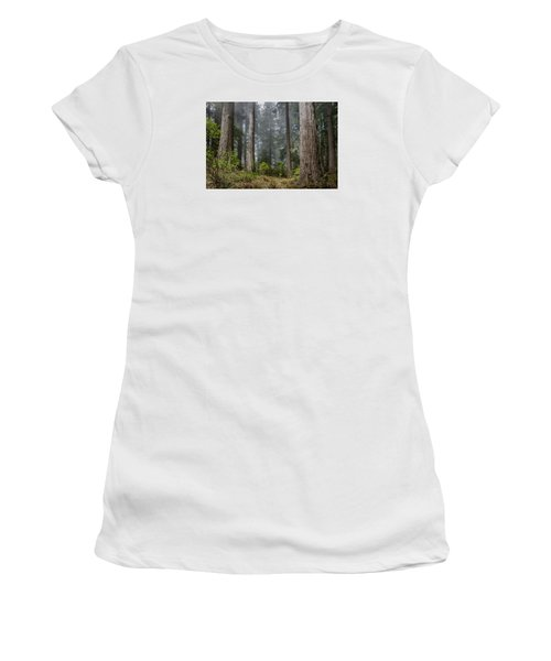 Into The Redwood Forest Women's T-Shirt (Junior Cut) by Greg Nyquist