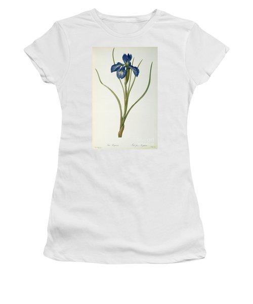Iris Xyphioides Women's T-Shirt