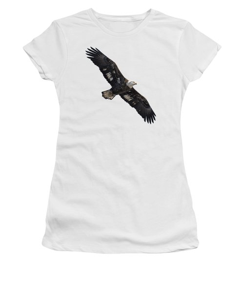 Isolated Juvenile American Bald Eagle 2016-1 Women's T-Shirt