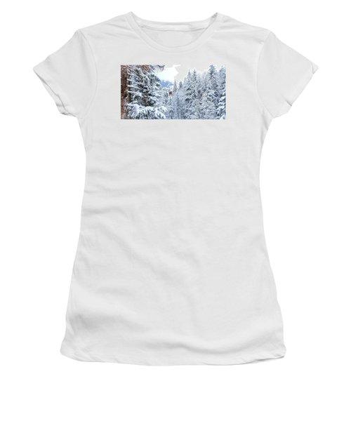 Last Cabin Standing- Women's T-Shirt