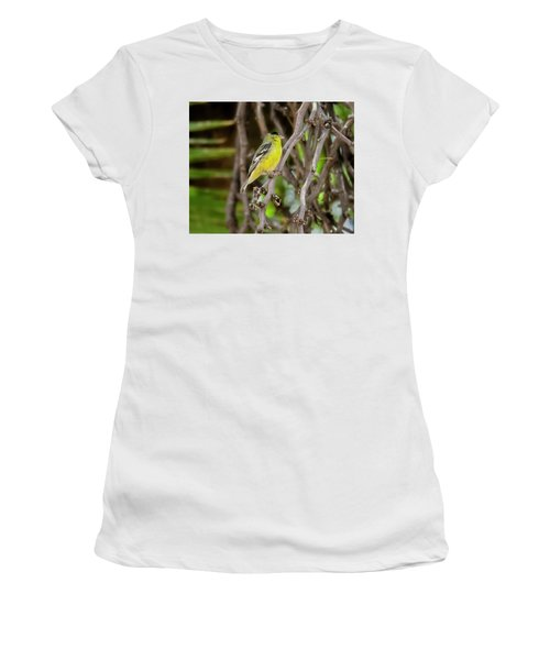 Women's T-Shirt (Athletic Fit) featuring the photograph Lesser Goldfinch H57 by Mark Myhaver