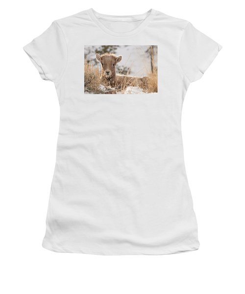 Little Bighorn Women's T-Shirt