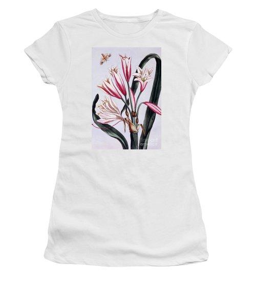 Long Leaved Amaryllis Women's T-Shirt