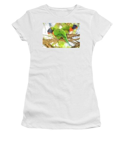 Lorrikeets 02 Women's T-Shirt