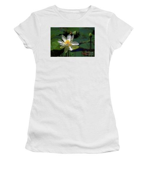 Lotus Blossom Women's T-Shirt (Junior Cut) by Paul Mashburn