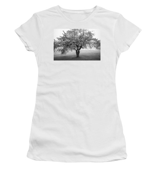 Women's T-Shirt (Junior Cut) featuring the photograph Maine Apple Tree In Fog by Ranjay Mitra