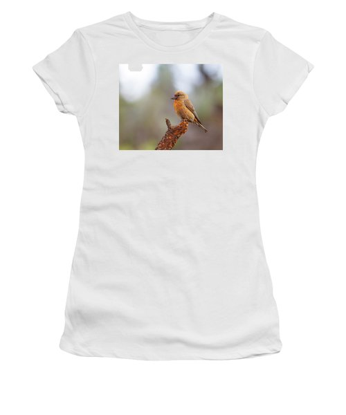 Male Red Crossbill Women's T-Shirt (Athletic Fit)