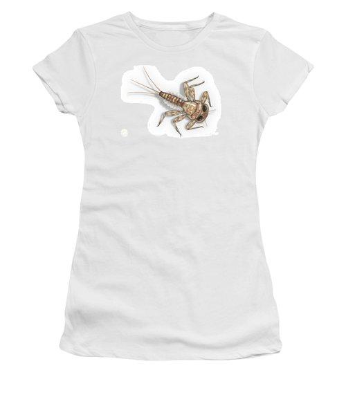 Mayfly Larva Nymph Rithorgena Ecdyonurus Venosus - Moscas De May Women's T-Shirt