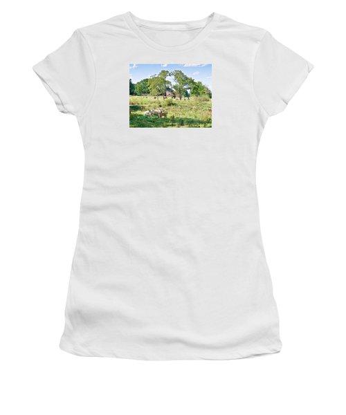 Midwest Cattle Ranch Women's T-Shirt (Junior Cut) by Scott Hansen