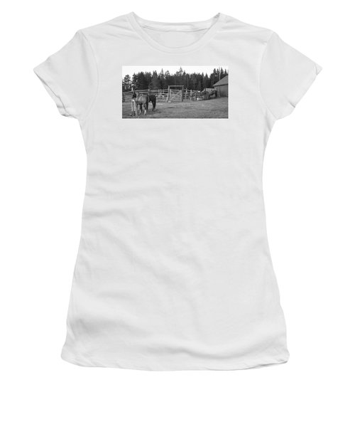 Mountain Corrals Women's T-Shirt