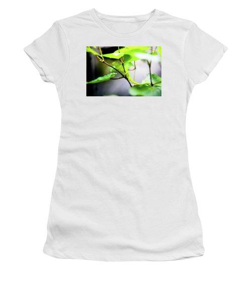 New Zealand Lizard Women's T-Shirt
