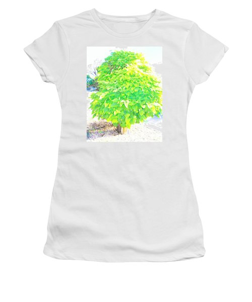 Women's T-Shirt (Junior Cut) featuring the photograph Obese American Tree by Lenore Senior