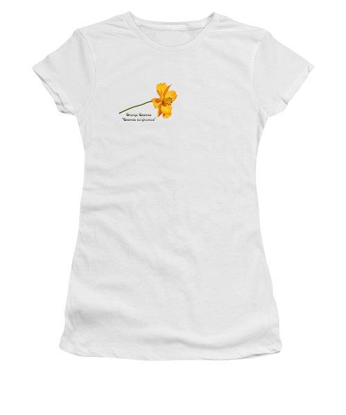 Orange Cosmos Isolated 2018-1 Women's T-Shirt