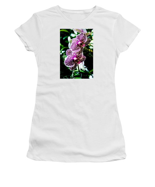 Orchid - Pla236 Women's T-Shirt (Junior Cut) by G L Sarti