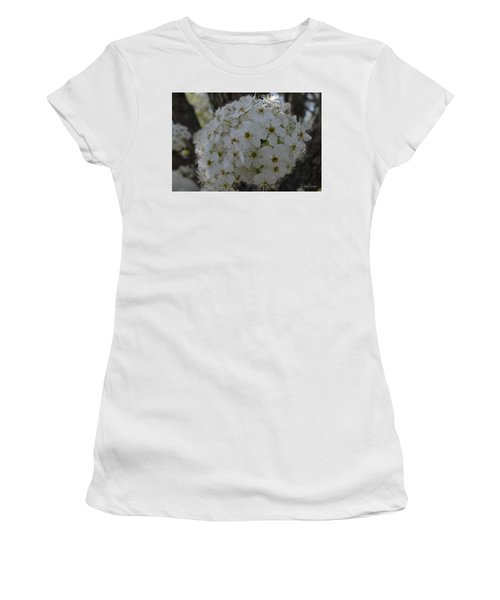 Pear Blossoms Women's T-Shirt (Athletic Fit)