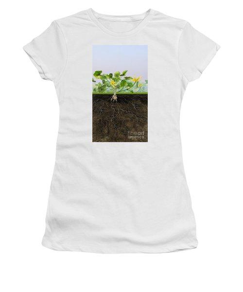 Pilewort Or Lesser Celandine Ranunculus Ficaria - Root System -  Women's T-Shirt (Athletic Fit)