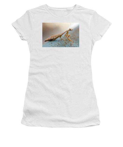 Praying Mantis Close Up Women's T-Shirt